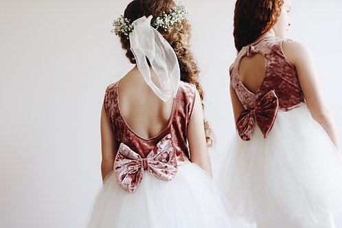 Velvet and soft tulle dress