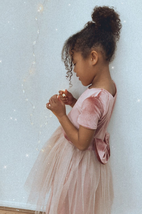 Pink Velvet Soft Tulle Dress