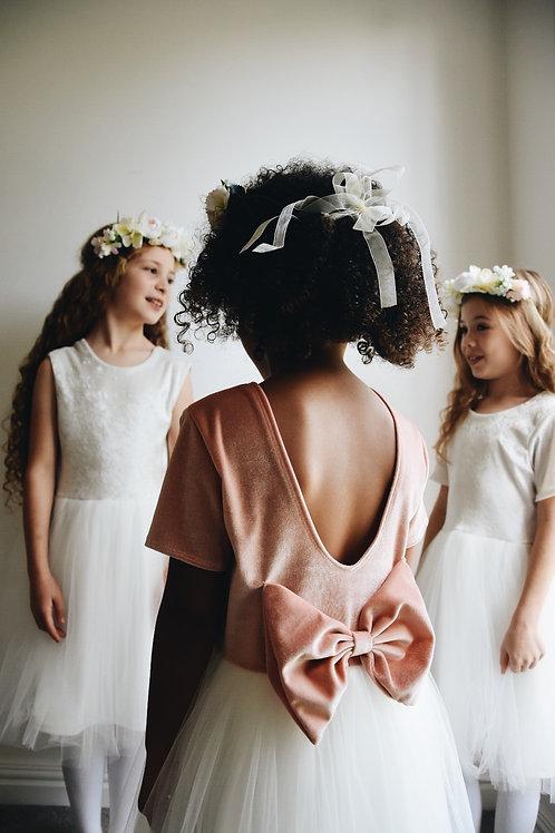 Blush velvet tulle dress