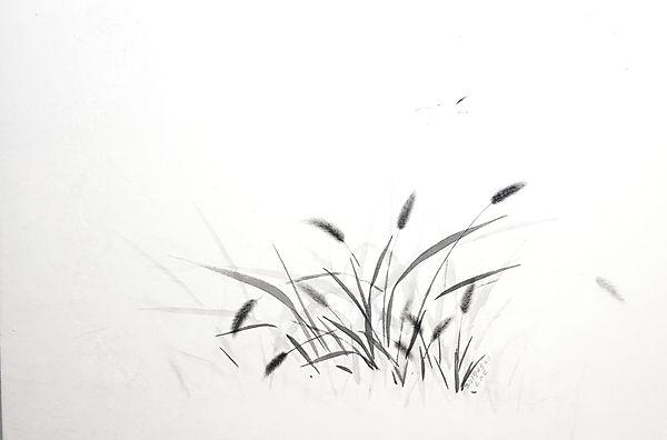 재료 : 한지에 먹 사이즈 : 96×65 작품명 : 강아지풀 190505
