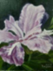 이혜은-2보라빛향기 30-30cm oil on canvas 2016.jp