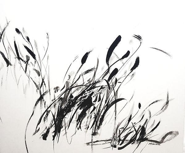 재료 : 한지에 먹 사이즈 : 65×43 작품명 : 강아지풀 190501