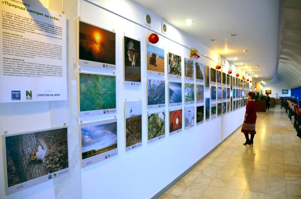 фотовыставка Виасат аэропорт РнД