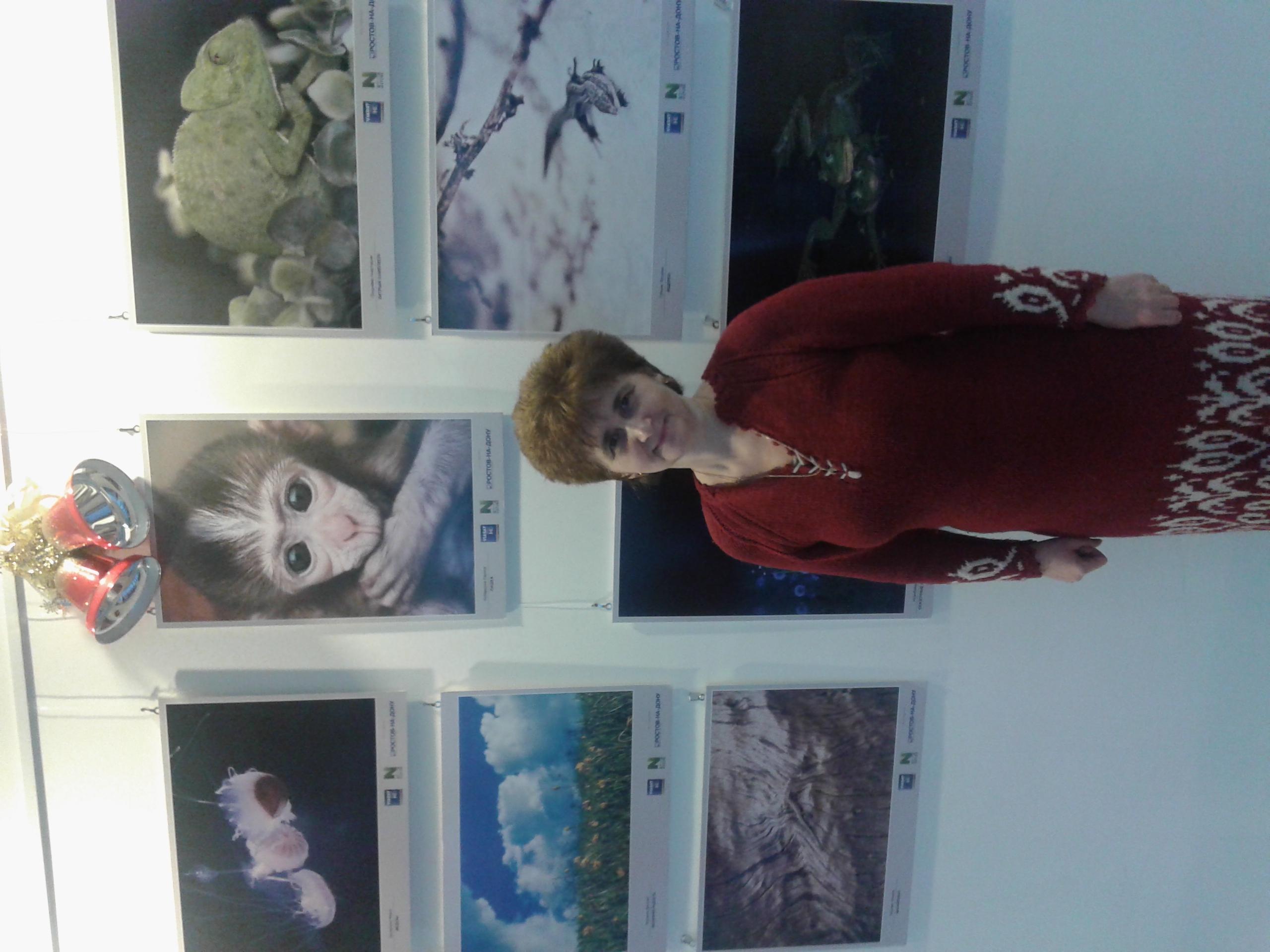 2015-12-27 Фотовыставка виасат в РнД