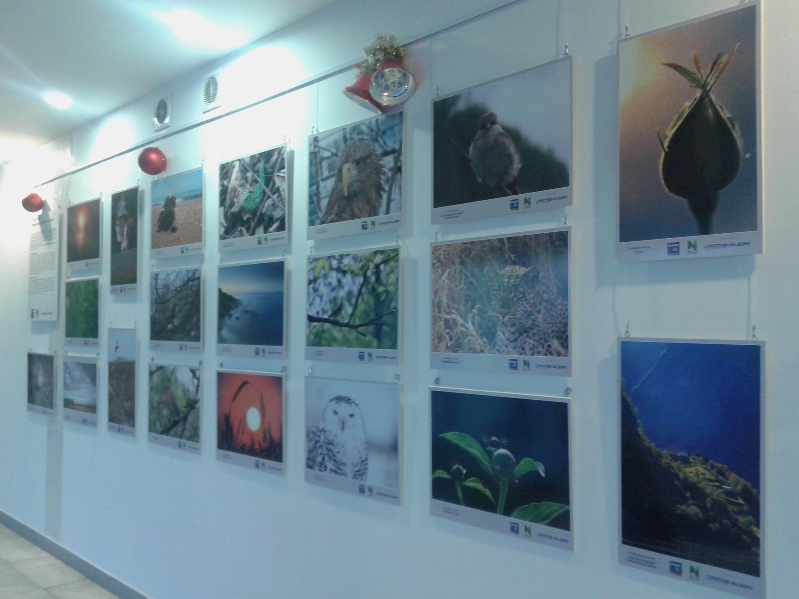 2015-12-27 Фотовыставка Виасат в аэр