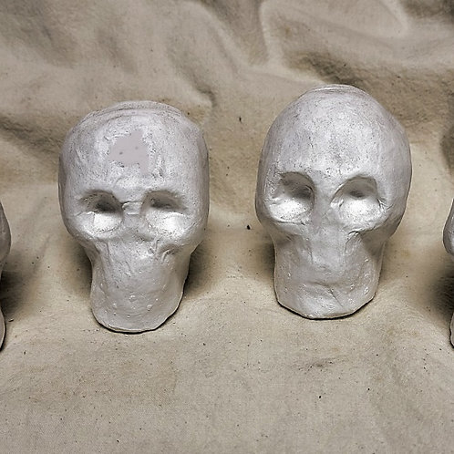Skulls for Painting Set of 4