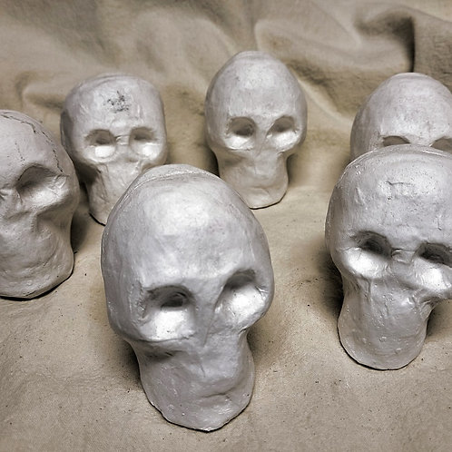 Skulls for Painting Set of 6