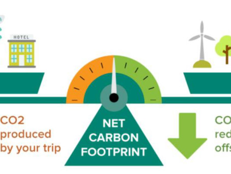 Using Carbon Offsets To Mitigate Your Carbon Footprint