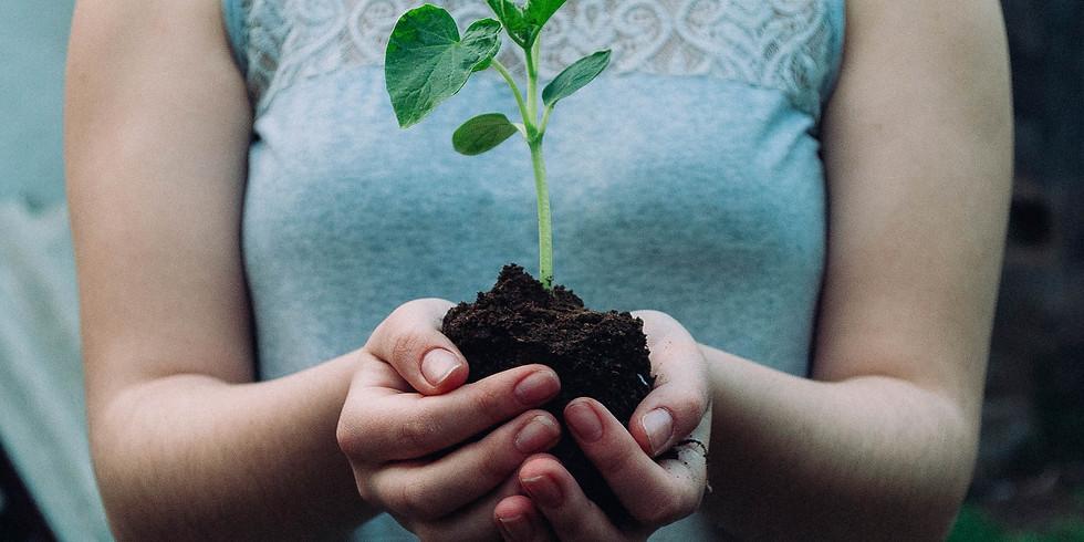 Plant Swap 2021