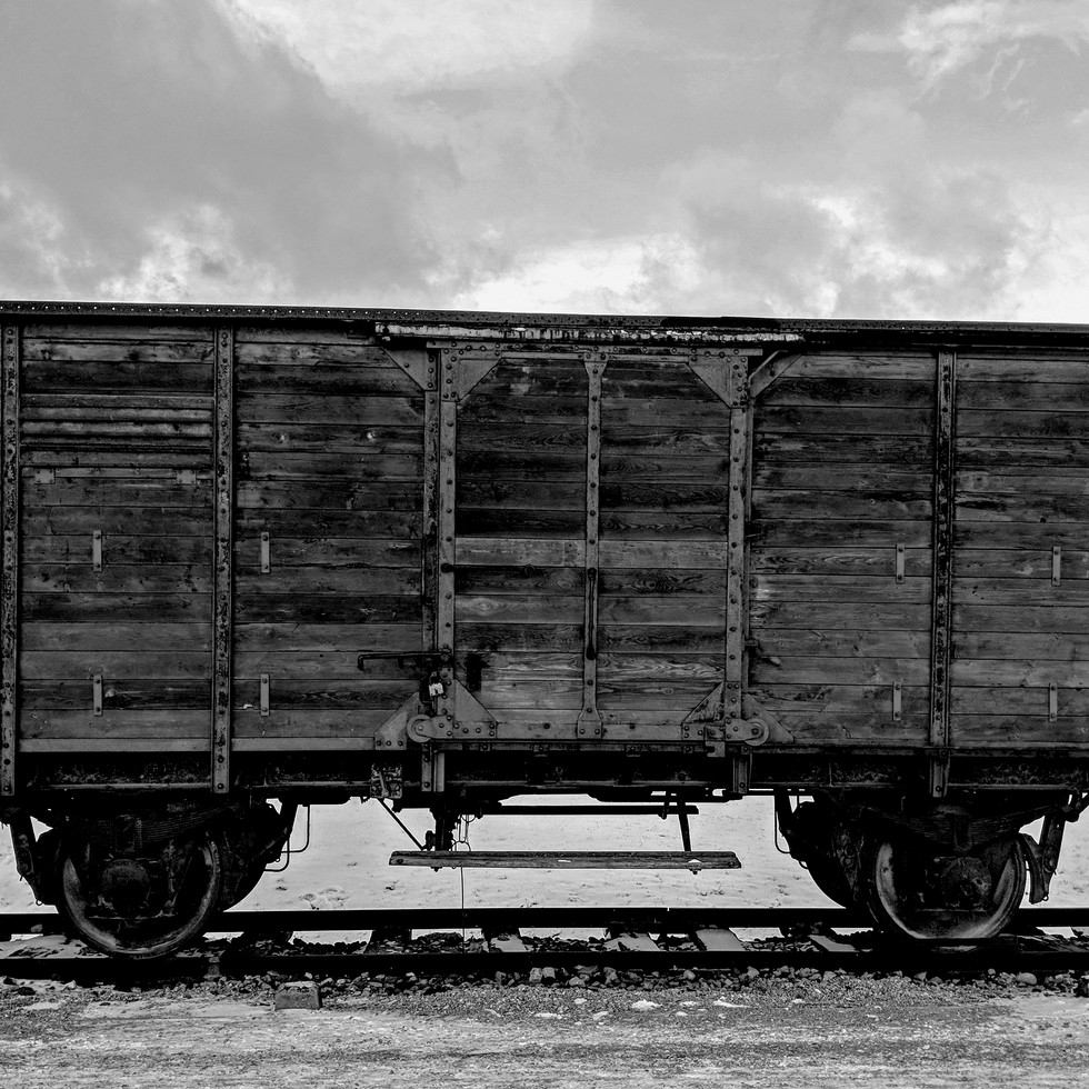 Holocaust Train at Birkenau