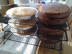 Bakewell tarts and Chocolate Victori