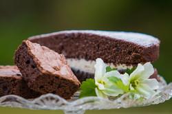 Chocolate Sponge cake with double chocol