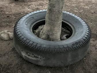 タイヤの謎が解けました!