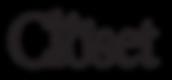 Closet logo.png