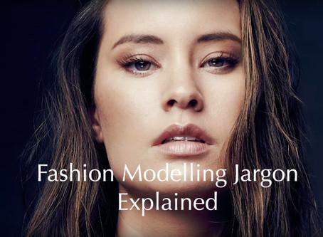 Model 101: Industry Jargon Explained