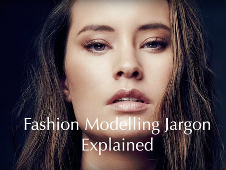 Model 101: Industry Jargon Explained