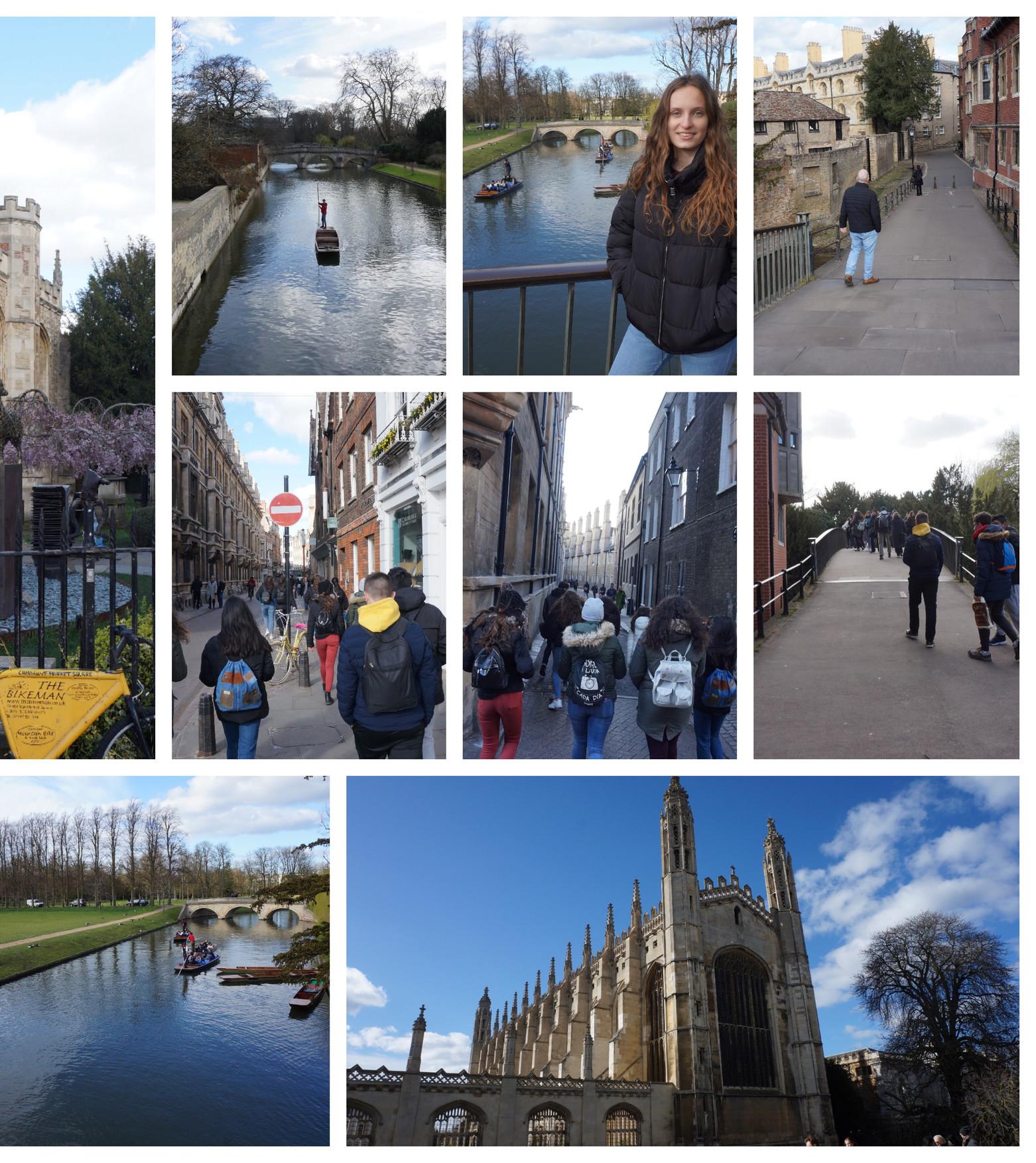 Collage 18.jpg