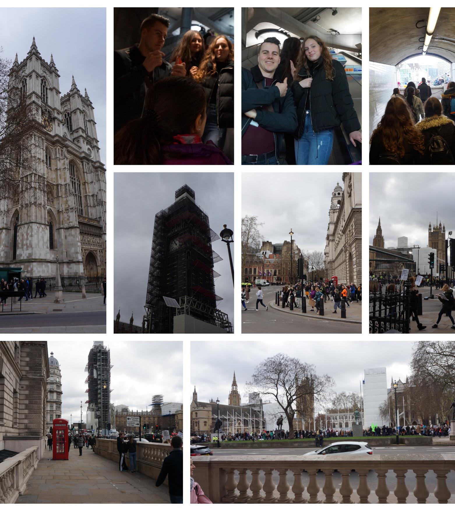 Collage 19.jpg