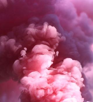 rosa fumo