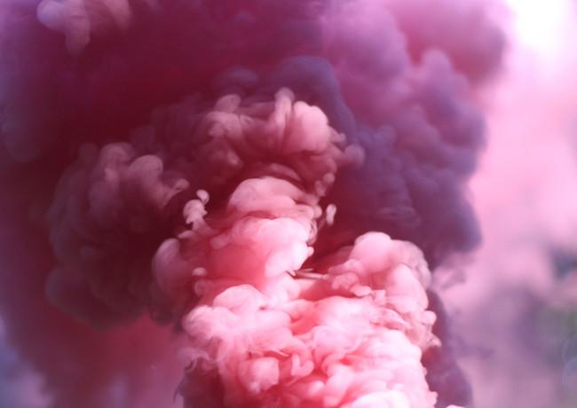 rosa Rauch