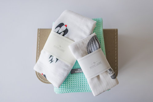 Welcome Baby - Gift Set #11 (Mint)