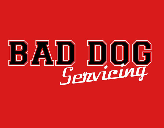 BAD DOG Servicing logo.jpg