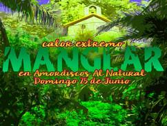 Manglar #10 - Amordiscos Al Natural