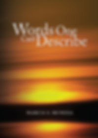 Words One Can't Describe poetry book