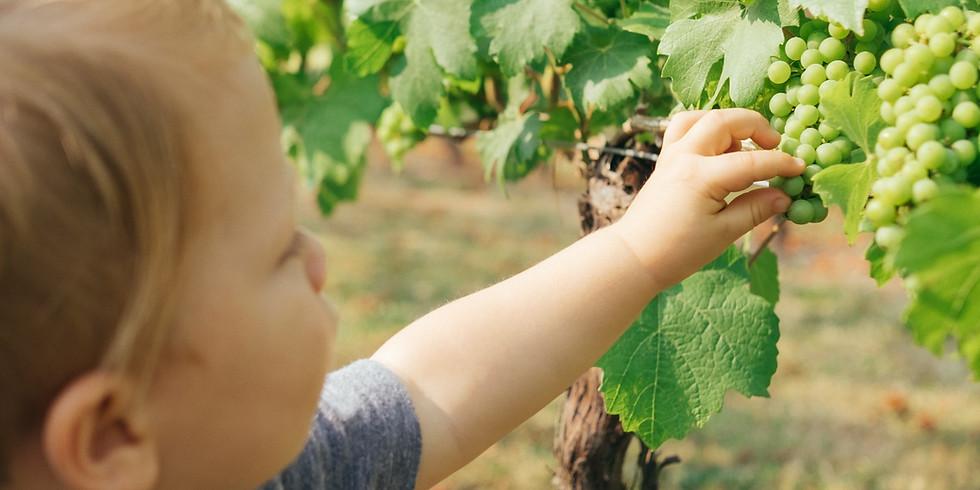 New Wine Kids 2021