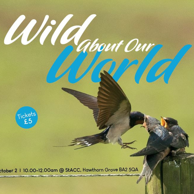"""HTCD Women's Ministry: """"Wild About Our World"""""""