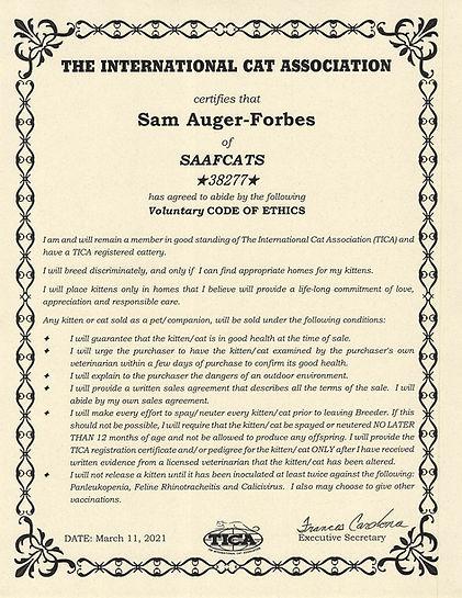 Voluntary code of ethics certificate.jpg