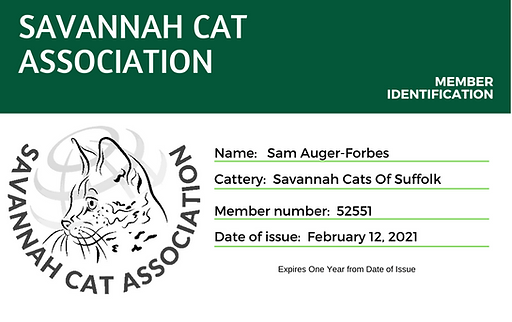 Savannah Cat Association (1).png