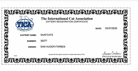 Tica Cattery Registration.webp