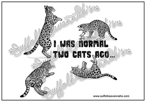 I was normal 2 cats ago Poster