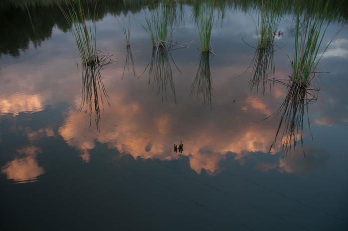 ilanda - Dam reflection - FULL-w1400.jpg