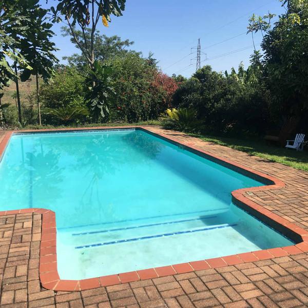 Halleria - Swimming Pool-w1400.jpg