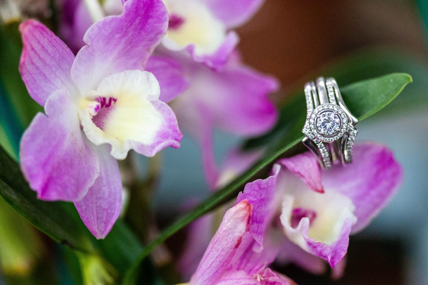 Greenhouse-Summer-Wedding