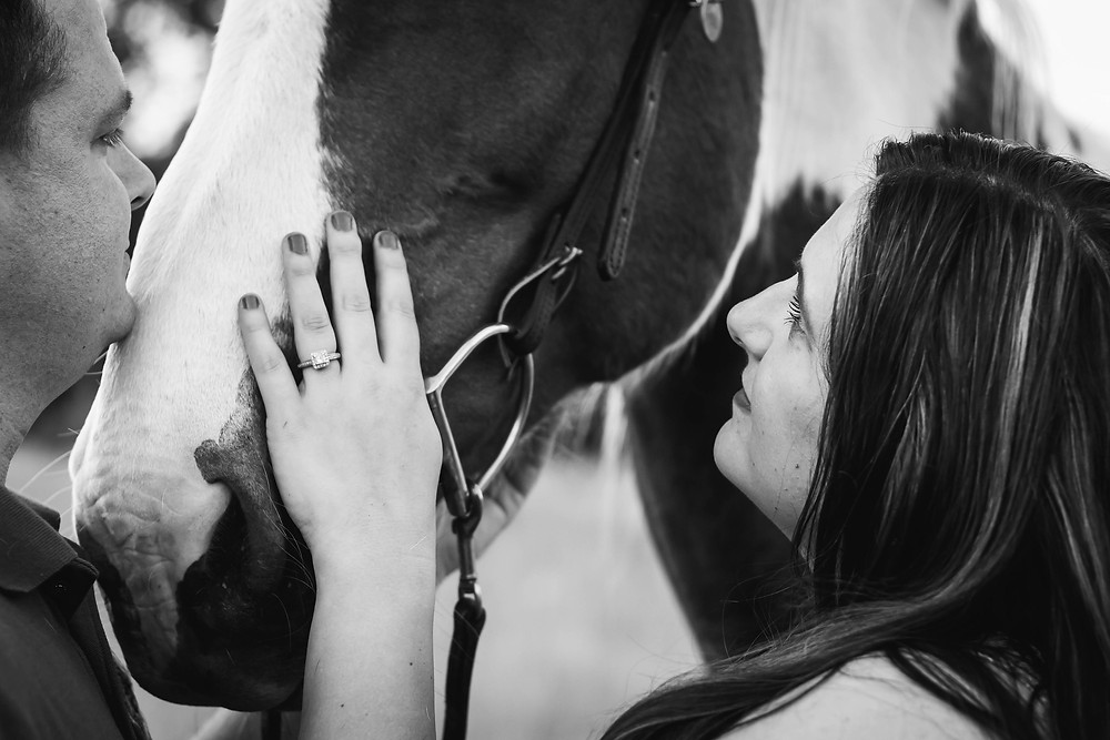 Black and white cute couple with painted horse in Lewisburg, Tennessee