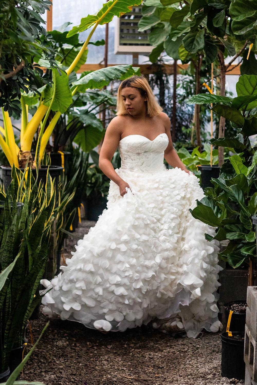Bride twirls her dress in a greenhouse