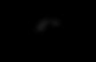 CAG-Logo_Black.png