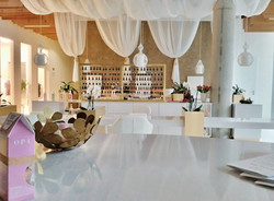 Royal Salon by OPI