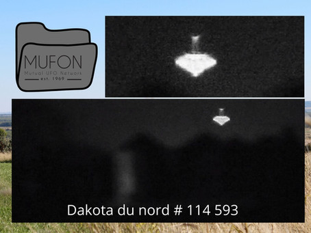 MUFON : Deux vaches retrouvées mortes après l'apparition d'un supposé OVNI