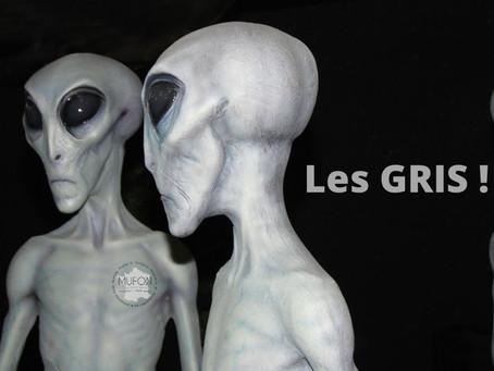 Typologie extraterrestre des Différentes espèces d'entités rapportées au MUFON