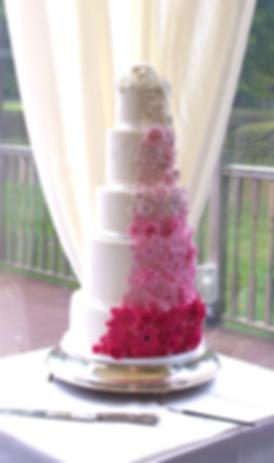 Birthday Cake in Reading, Topsy Turvy Cake, 2 tier Cake, Bow Cake