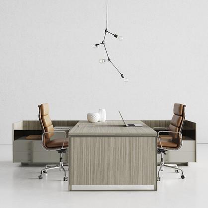 Contemporary Designed Desk