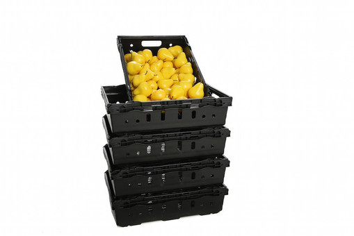 Stackable Vegetable Crates