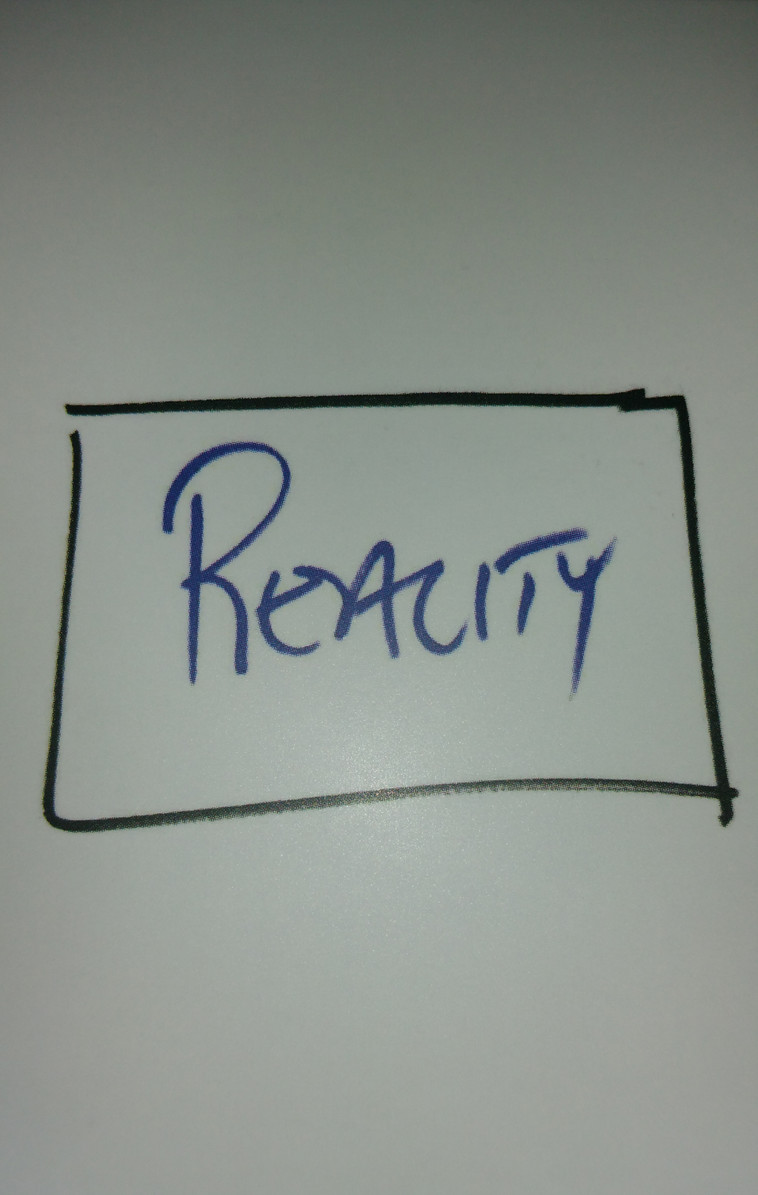 Reality Box