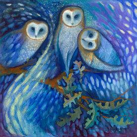 Owls of the Aurora Borealis