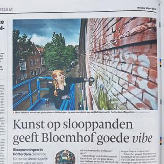 Algemeen Dagblad 18-06-2019