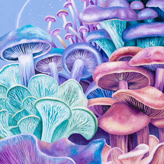 Purple mushroom paradise